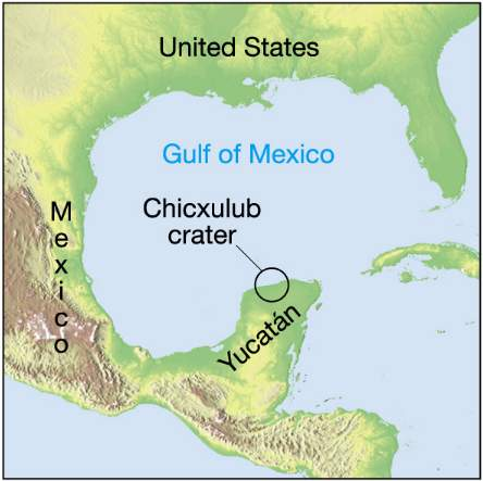 a study on the impact of the chicxulub on the mass extinction of the k t Lesson 3: mass extinctions: consensus in the craters chicxulub impact predates the k-t boundary mass extinction whiff of gas points to impact mass extinction.